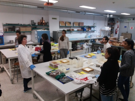 La profesora Reyes Rodríguez en el laboratorio de materiales preparando probetas con distintos materiales orgánicos y no orgánicos para comparar sus propiedades.
