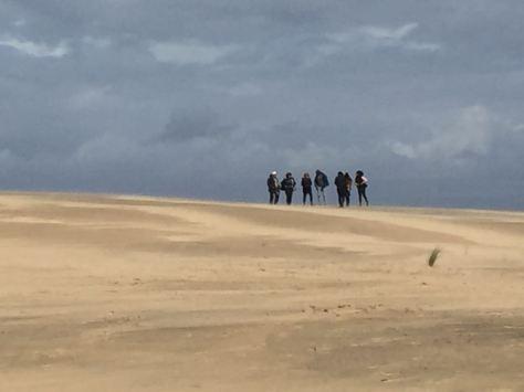 El 25 de febrero de 2017 se realizó la visita al parque nacional de Doñana, bajo la coodinación de la profesora del mcas Águeda Villa.